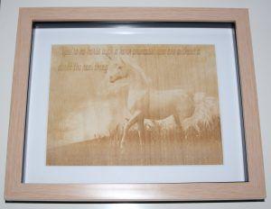 unicornjamesdornan2
