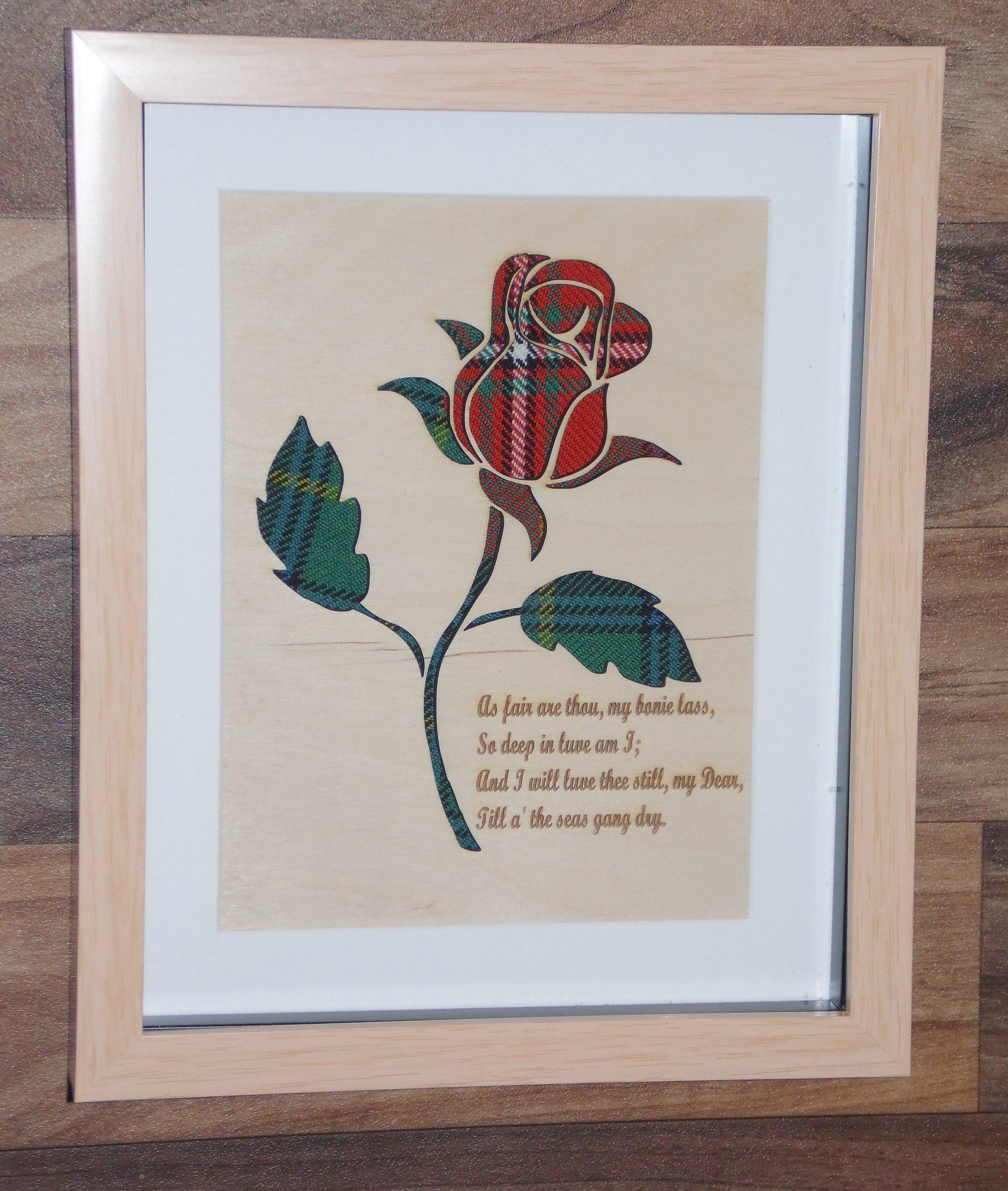 Burns Rose