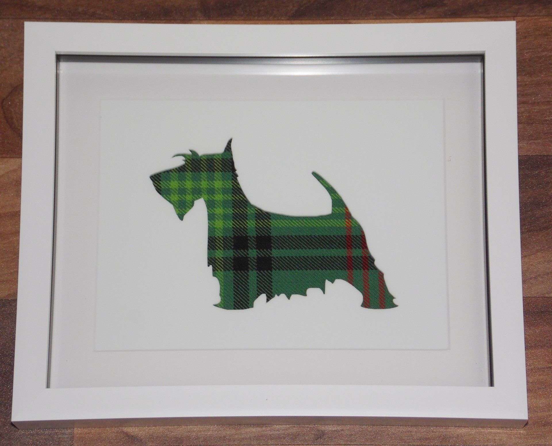 Tartan Scottish Terrier on white background